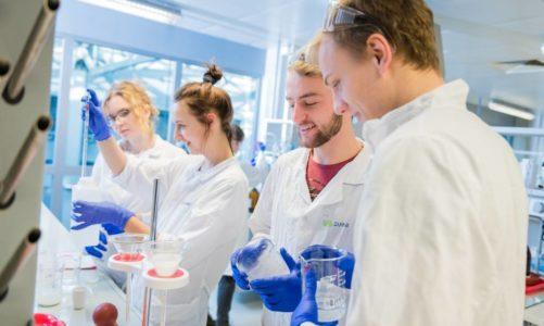 Najpopularniejsze kierunki studiów. Jak pandemia zmieniła zapotrzebowanie na nowe kwalifikacje i zawody.